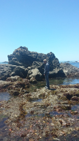 My friend standing over the rocks watching the tide.